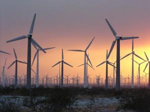wind-farm-300x225